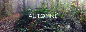 2016 11 Automne